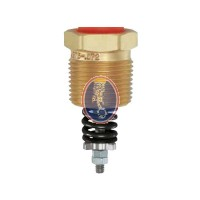 REGO-8545AK Pressure Relief Valve